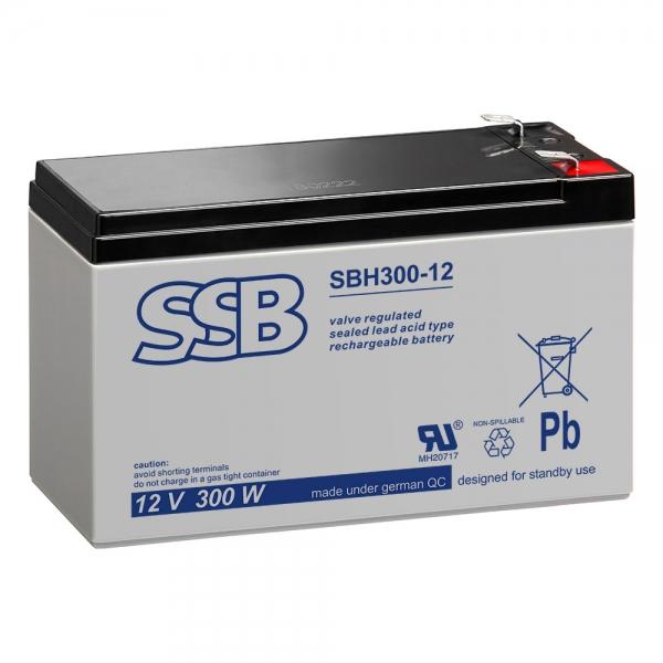 SSBBH300_12.jpg